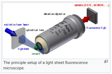 Light sheet microscopy set up